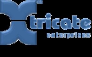 Xtricate Enterprises